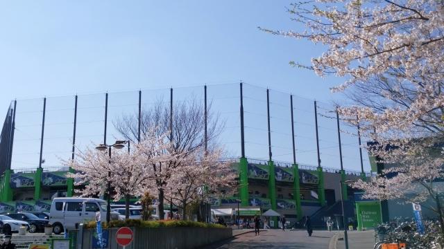 鎌ケ谷スタジアム20190413004