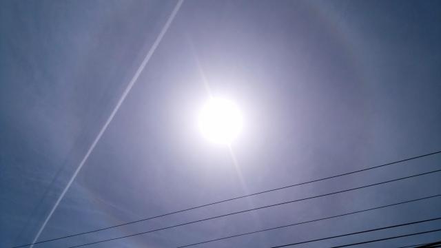 ハロ 小安峡201904280001