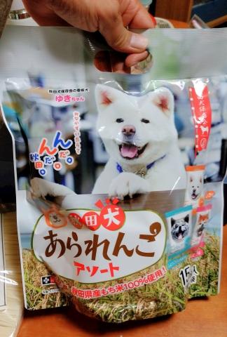 秋田犬あられんこ20190500001