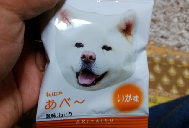 秋田犬あられんこ20190500004