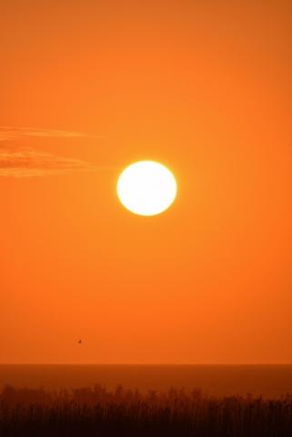 東雲台地の夕焼け201905020008