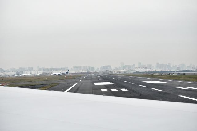 JAL20181122000000.jpg