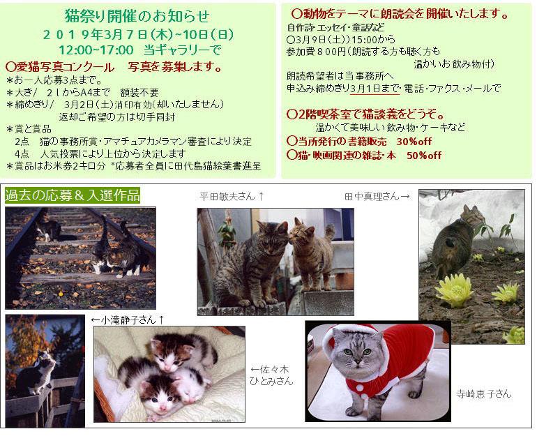 2019猫祭りお知らせ