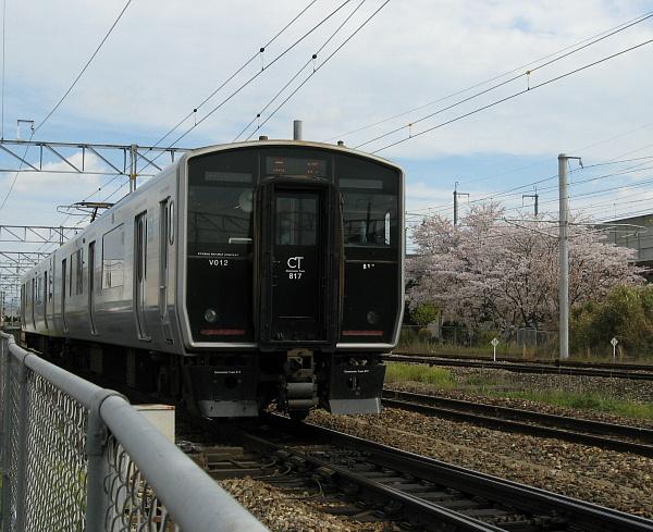 817系と桜2019