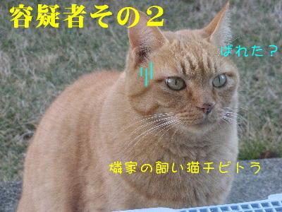 IMG_0267.jpg