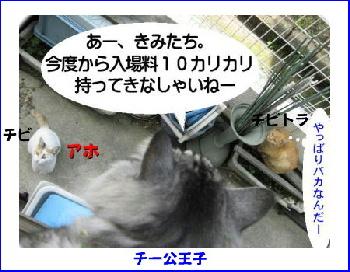 chiko-chibi2.jpg