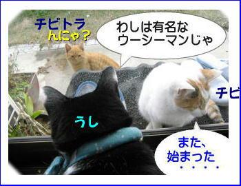 chiko-chibi3.jpg