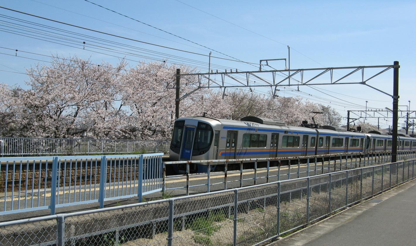 三潴と桜と西鉄