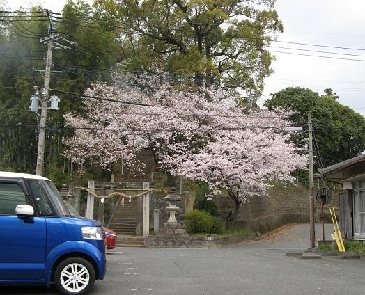 基山 桜 神社