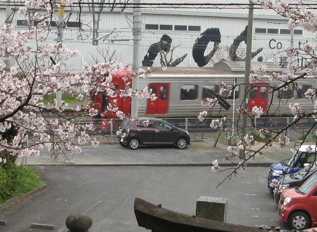 桜 813系 基山