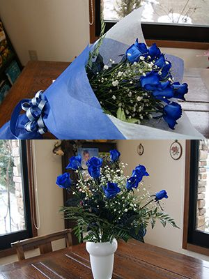 blue-buke-2.jpg