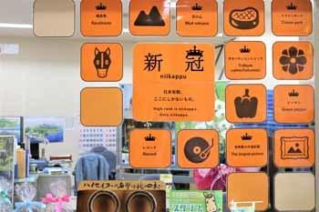 20190611_観光協会新外観3