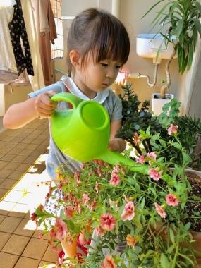 piyoko20190525-2.jpg