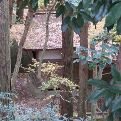 成田山公園-106