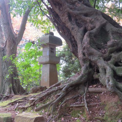 成田山公園-109