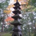 成田山公園-128