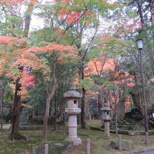 成田山公園-133