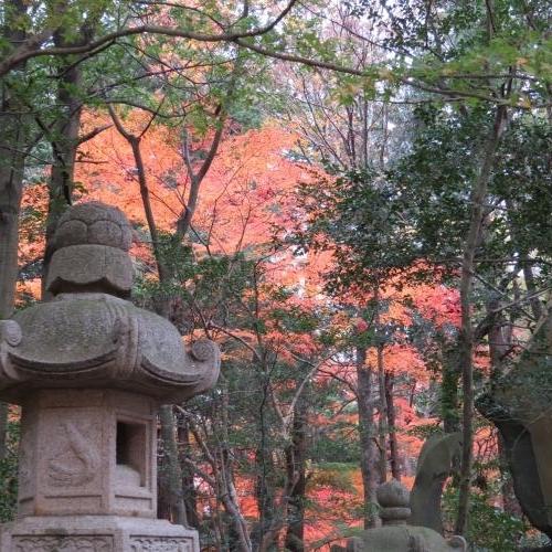 成田山公園-134