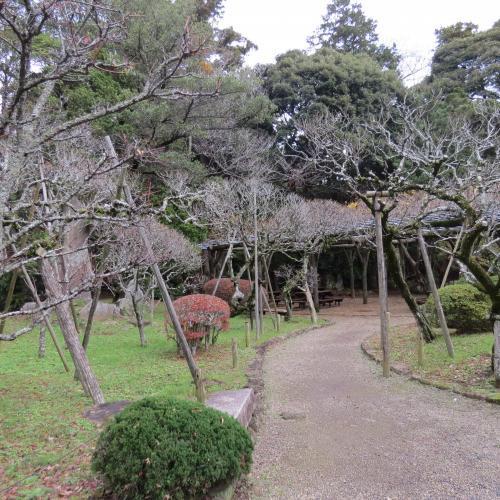 成田山公園-140