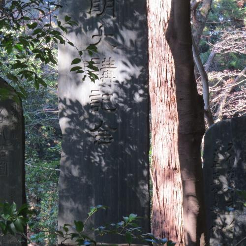 成田山公園-205