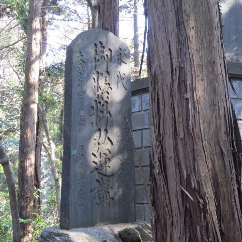成田山公園-209