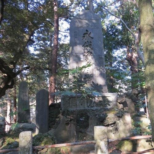 成田山公園-206