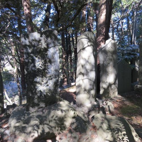 成田山公園-236