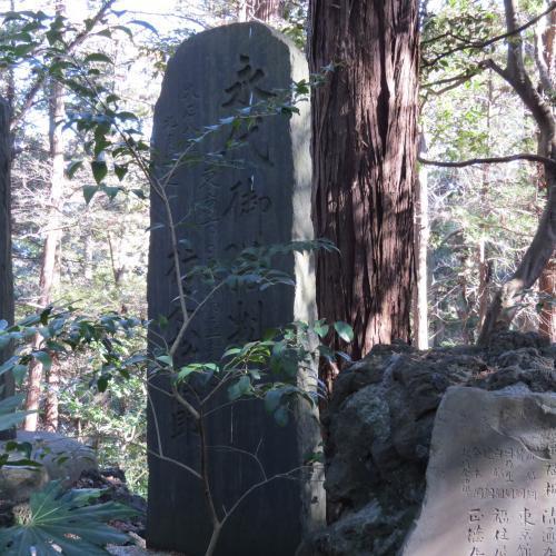 成田山公園-246