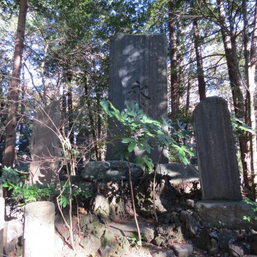 成田山公園-258