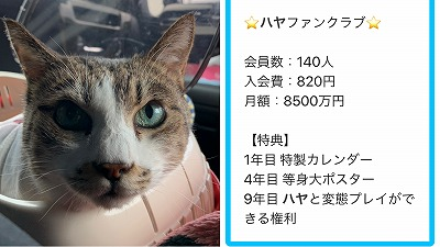 IMG-8114.jpg