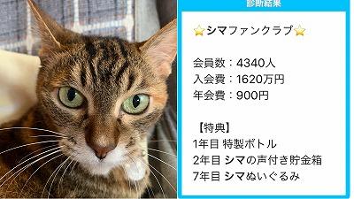 IMG-8115.jpg