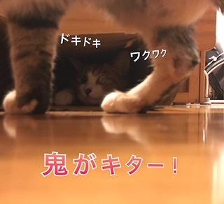 IMG_0220.jpg