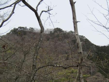 190414多高山 (38)s
