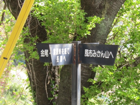 190420波久礼~野上 (19)s