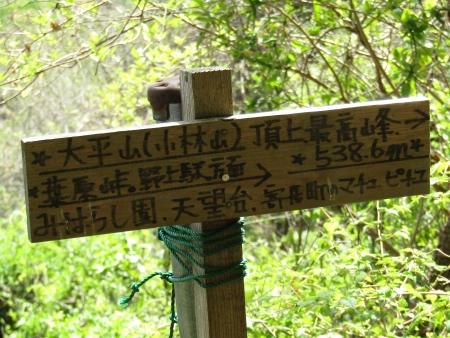 190420波久礼~野上 (26)s