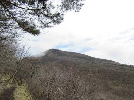 190501鍋割山~荒山 (5)s