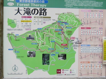 190621三頭山~御前山 (1)s