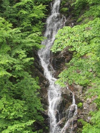 190621三頭山~御前山 (12)三頭の大滝s