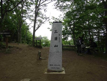 190621三頭山~御前山 (21)三頭山s
