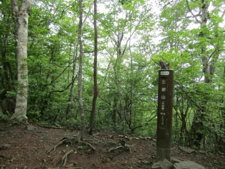 190621三頭山~御前山 (23)三頭山s