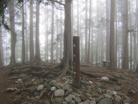 190622御前山~御岳 (10)鋸山s