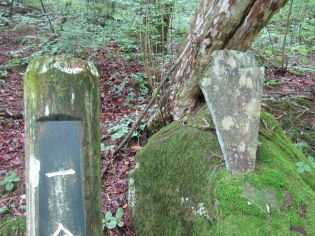 190707二ッ岳 (1)s