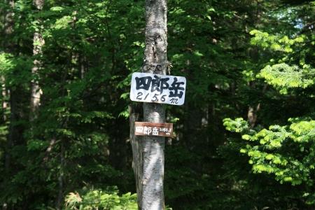 080713四郎岳・燕巣山 (18)65