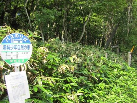 190801地蔵岳~長七郎山 (1)s
