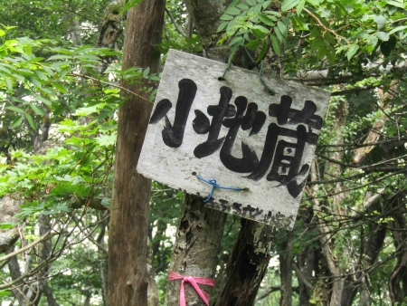 190801地蔵岳~長七郎山 (47)s