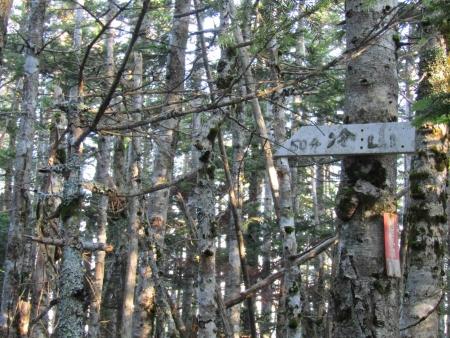 190804丸山~冷山~茶臼山 (9)s
