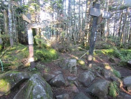 190804丸山~冷山~茶臼山 (10)s