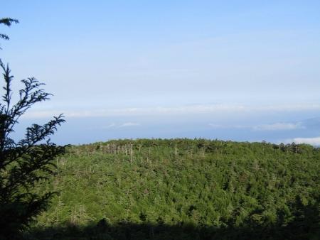 190804丸山~冷山~茶臼山 (13)冷山s