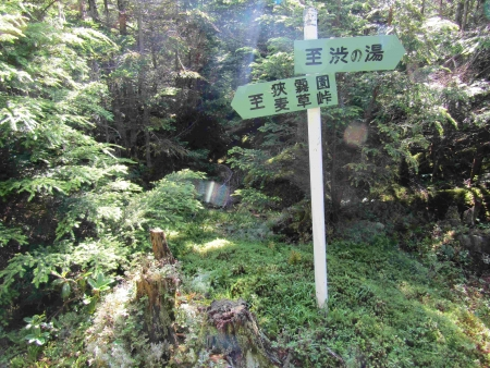 190804丸山~冷山~茶臼山 (25)s
