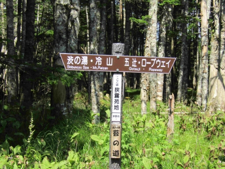 190804丸山~冷山~茶臼山 (47)s
